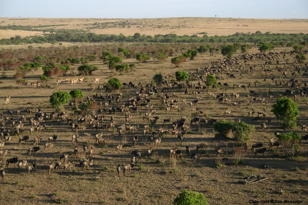 Du lịch Kenya bằng khinh khí cầu