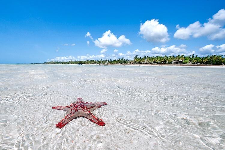Du lịch biển ở Kenya