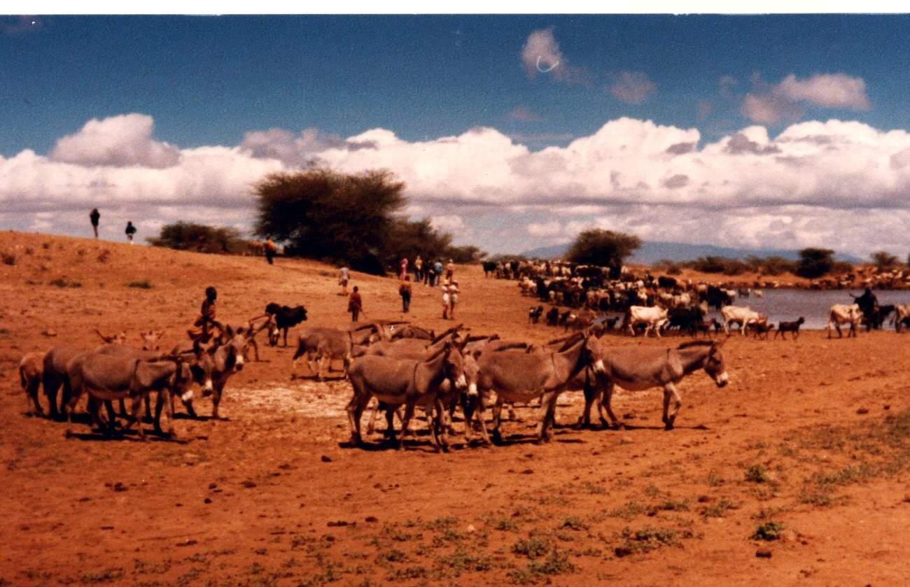 Khám phá hồ Turkana, Kenya